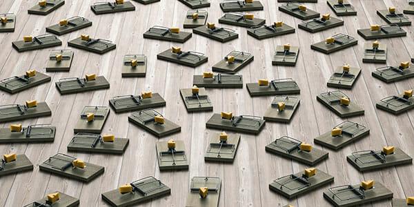 mouse-traps-600x300